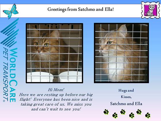 Satchmo and Ella