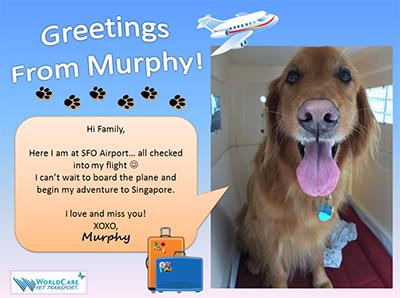MURPHY GOES TO SINGAPORE