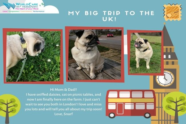 Snarf's UK Adventure